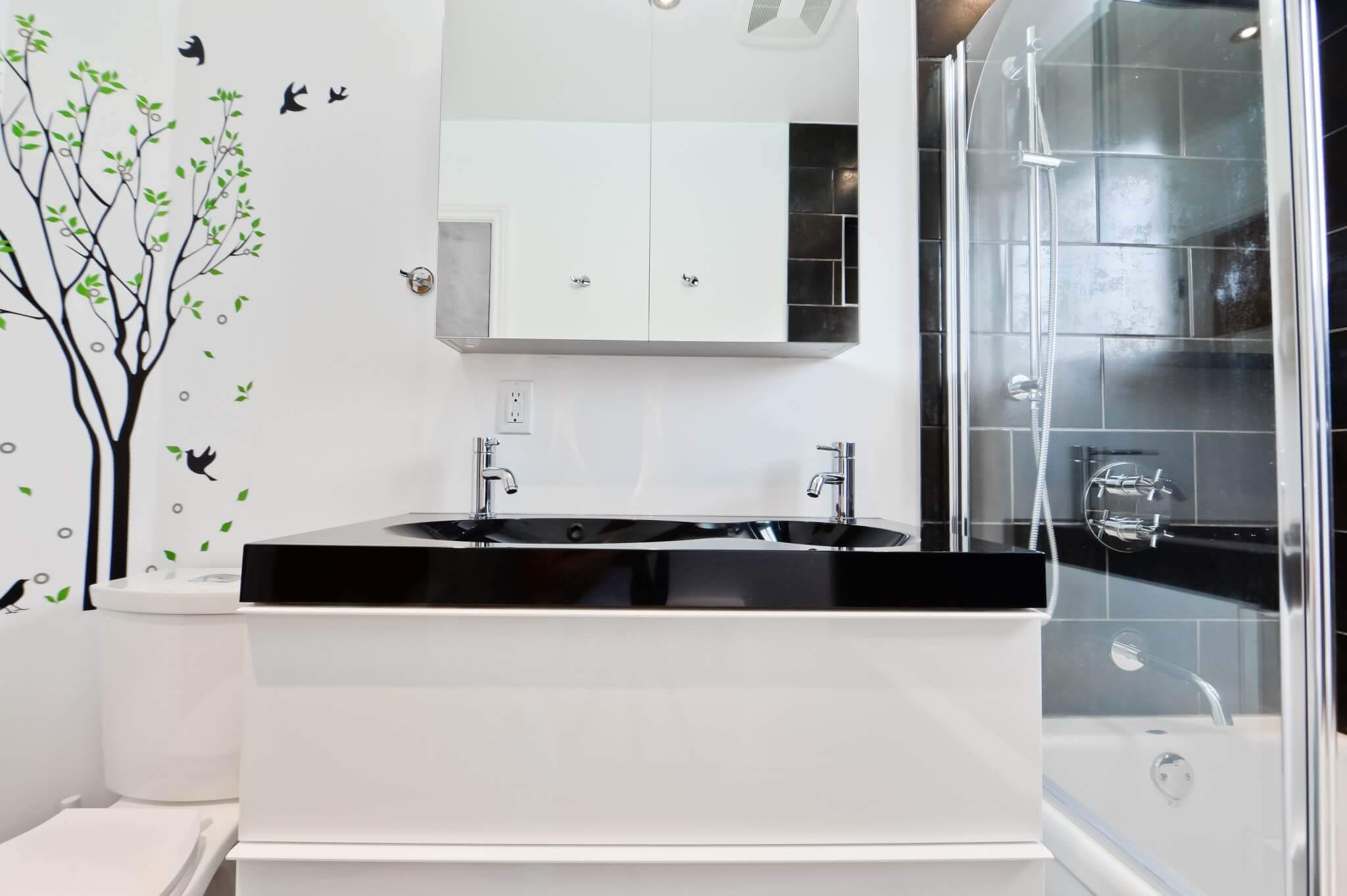 lavabo noir et vanite blanche