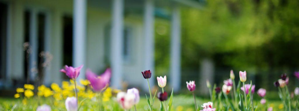 Préparer sa maison pour le printemps: quoi faire?