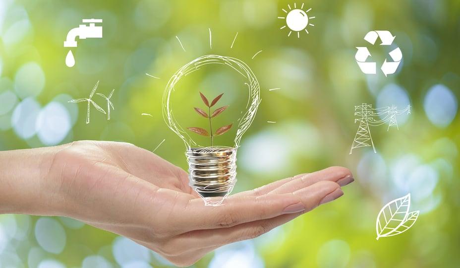 main tenant une image d'ampoule avec des dessins en lien avec l'environnement