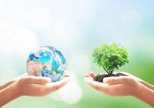 écologie de la terre