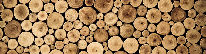 design-bois-coupé-en-rondelles