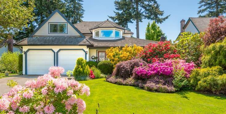 exterior house landscaping