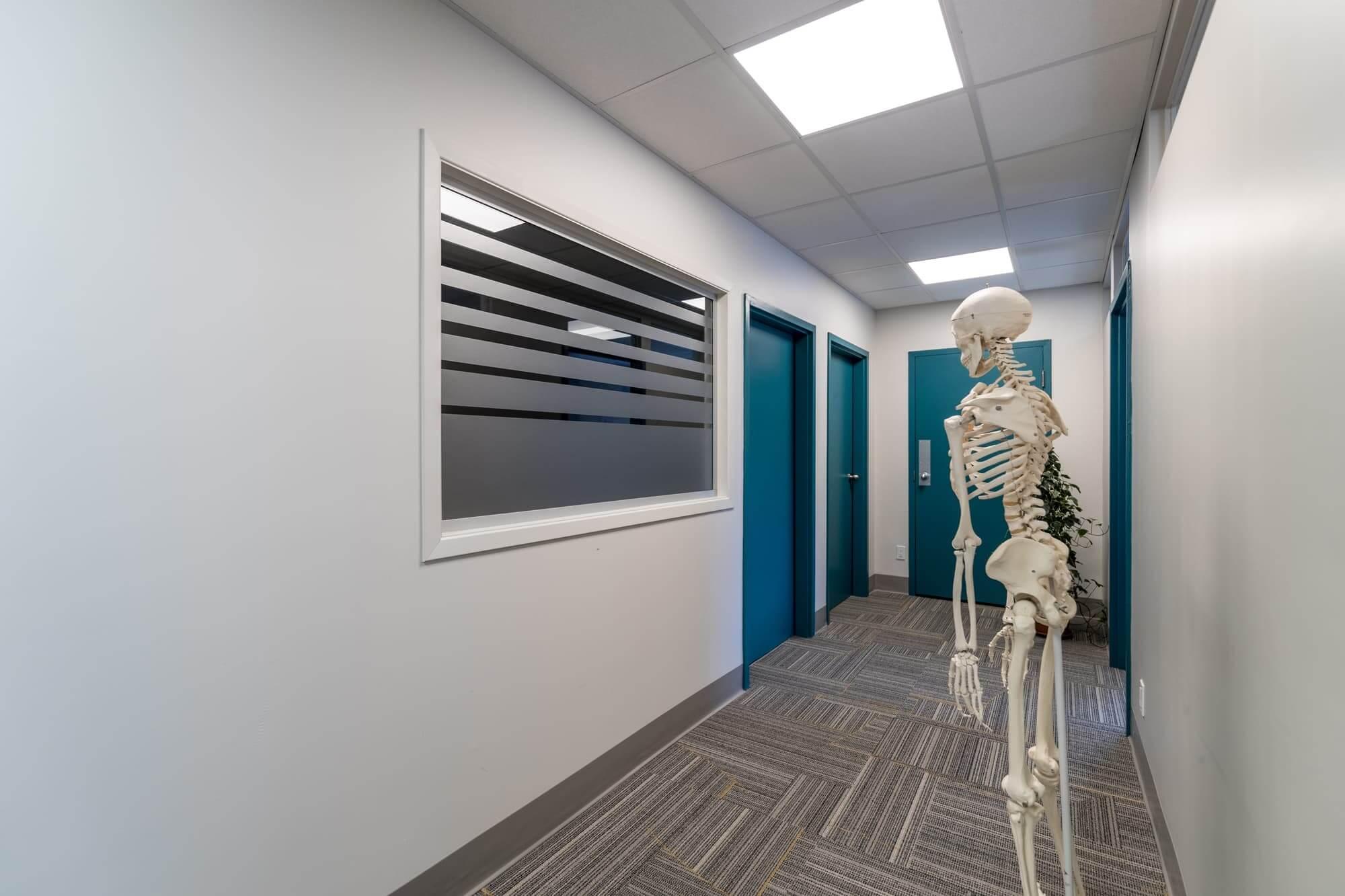 Rénovation commerciale d'une clinique de physiothérapie - vue sur corridor et portes turquoises et squelette