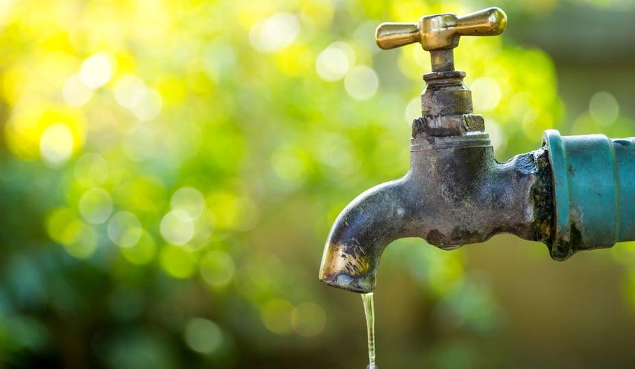 conduite d'eau extérieure avec fond d'arbres verts