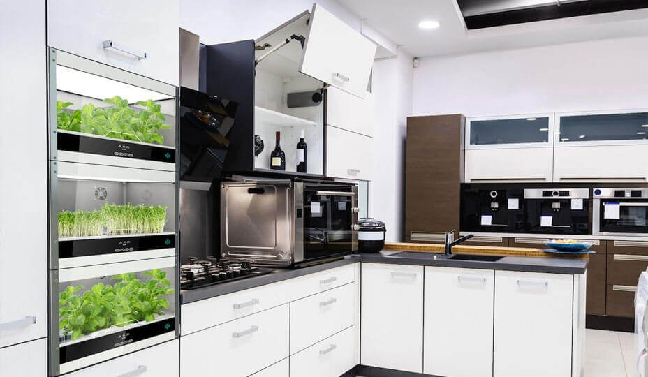 hydroponic kitchen
