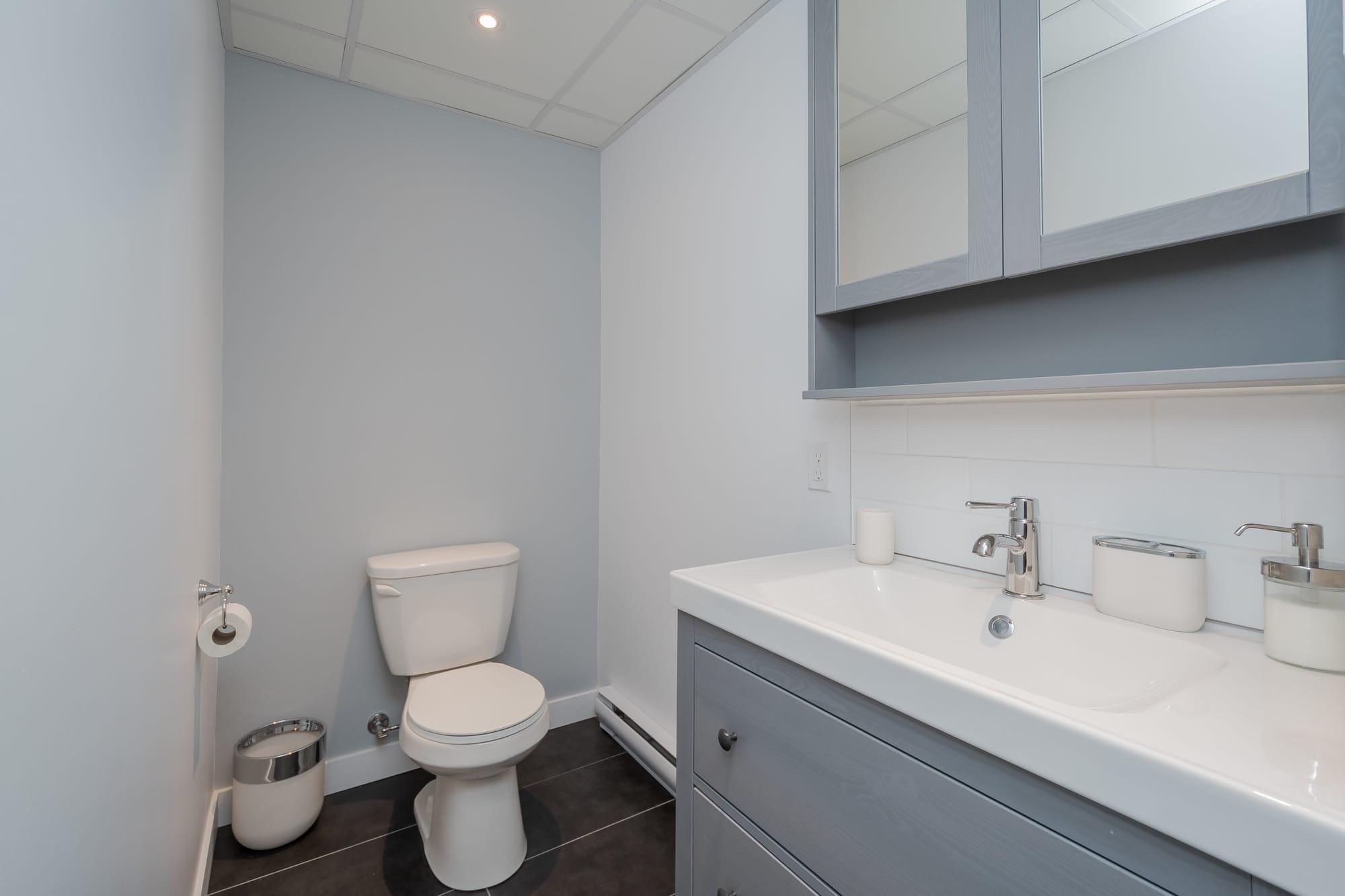 salle d'eau dans un sous-sol rénové avec meuble-lavabo et pharmacie avec miroir
