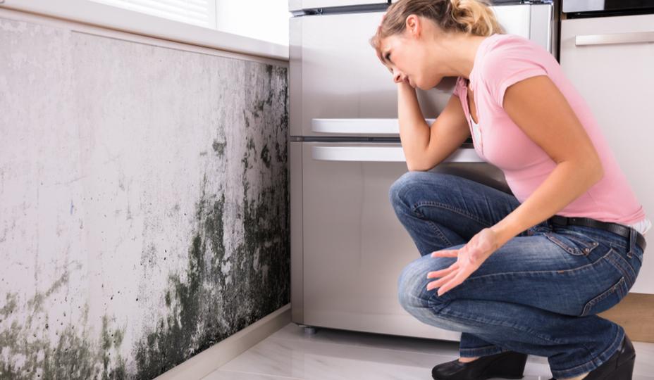 femme regardant moisissure sur le mur
