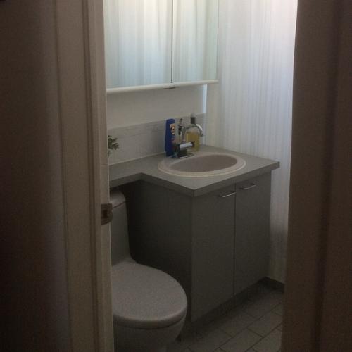 McDonough   Bathroom