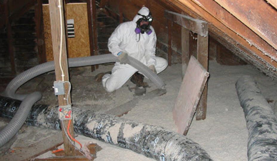 professionnal getting rid of vermiculite in an attic